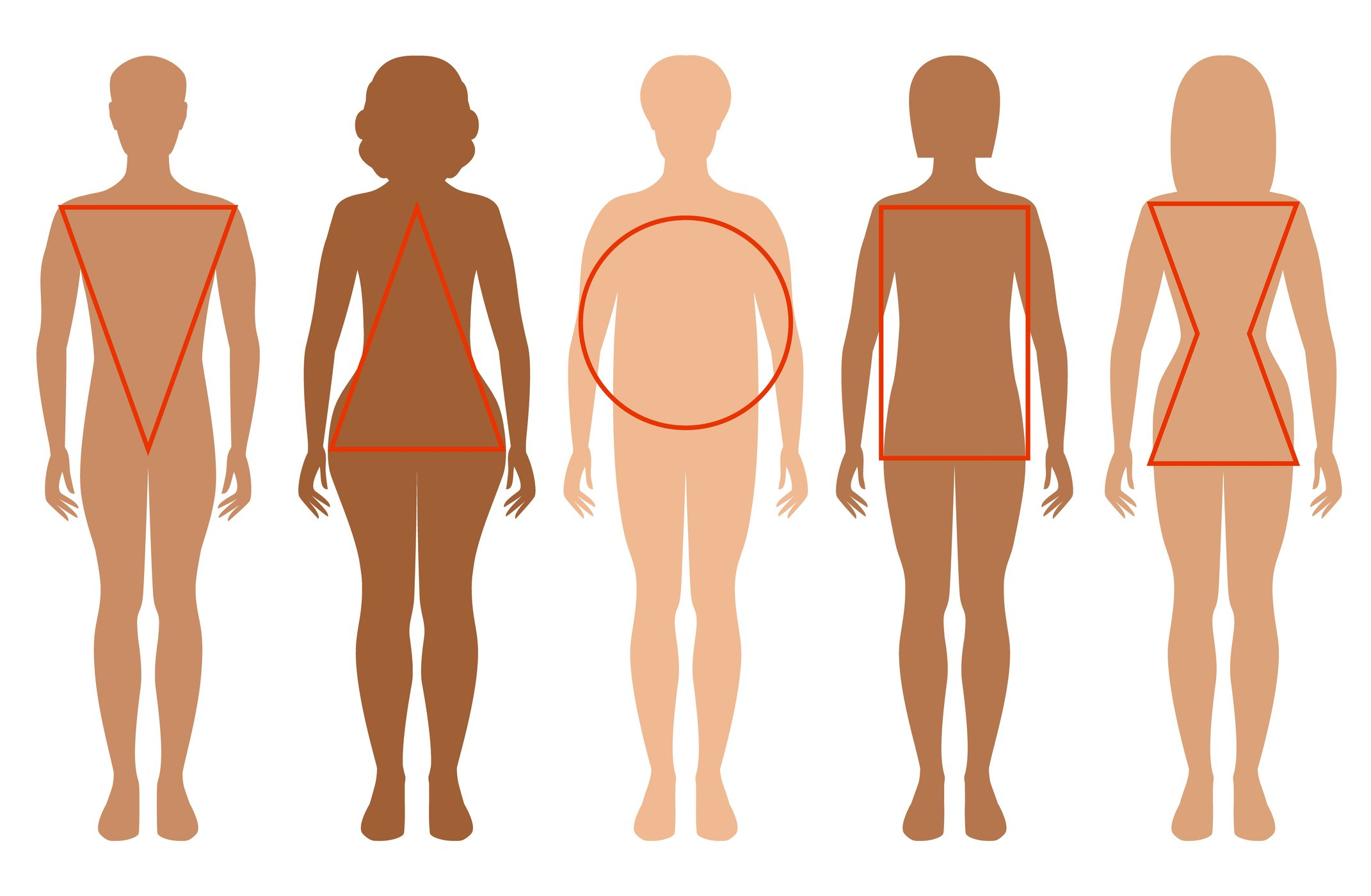 Five female silhouettes. Types of female figures.